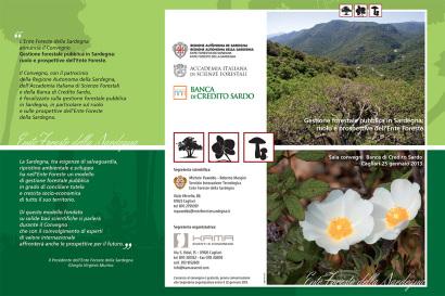 Gestione forestale pubblica in Sardegna: ruolo e prospettive dell'Ente Foreste