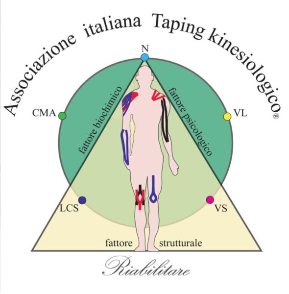 Corso teorico pratico trattamento mio fasciale con Physioblade e applicazione del Taping Kinesiologico Bellia Korean System Italy